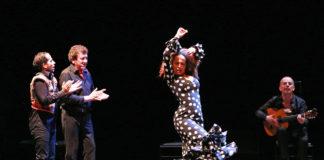 carmen flamenco - syma news - yeremian florence - flamenco