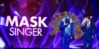 Mask singer - TF1 - Camille Combal - prime time - plateau