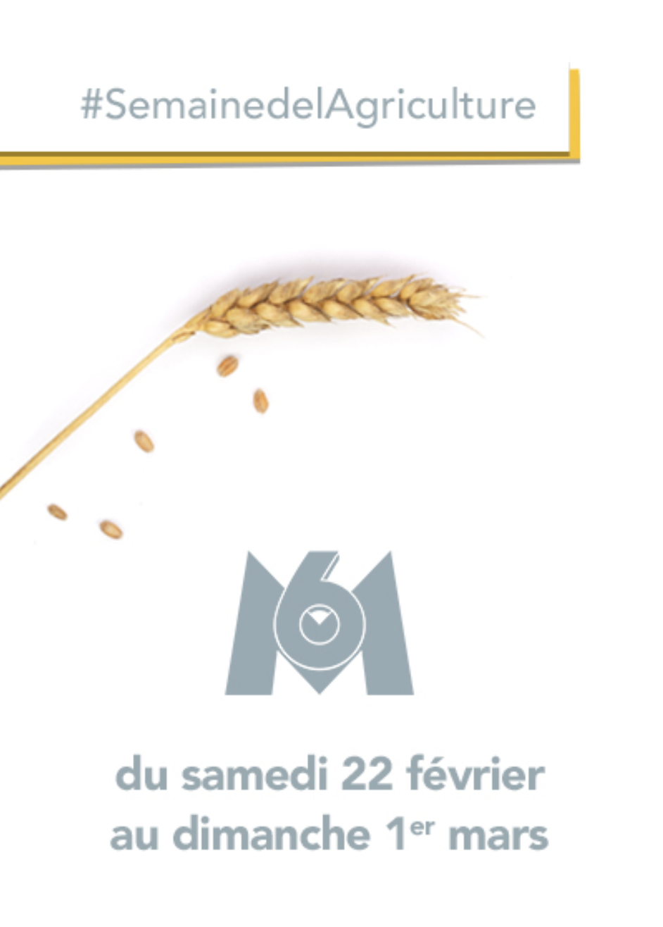 Groupe M6 - agriculture