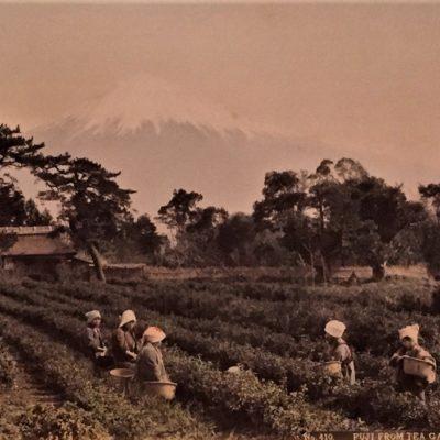 Japon japonisme exposition art peinture estampe musée guimet asiatique hokusai hiroshige photographie mont fuji spiritualité histoire