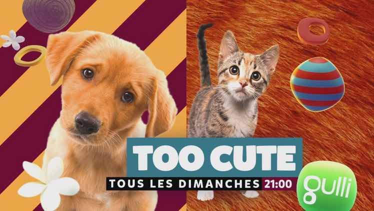 Too cute - Gulli