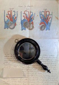 anatomie-crocodile-livre-planche-collection-livre-symanews-yeremian-gopikian