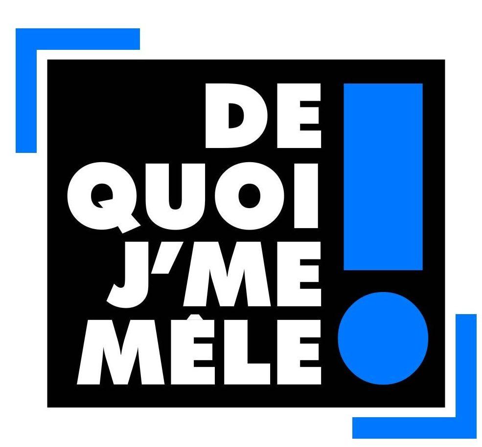 De quoi j'me mêle - C8 - Eric Naulleau - talk show - culture