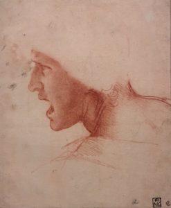 Léonard de Vinci - Expo - Exposition - Louvre - Vinci - art - kunst - renaissance - Florence Yeremian - Syma News - génie - genius - paris - joconde - verrocchio - codex - reflectographie - peinture - painting - huile - dessin - Leonardo da vinci