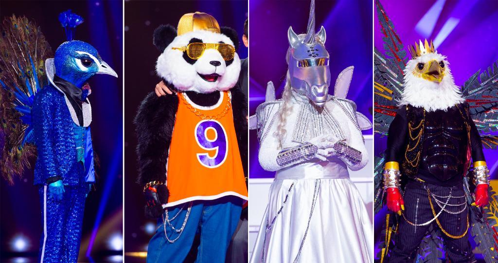Mask Singer - Casting - TF1