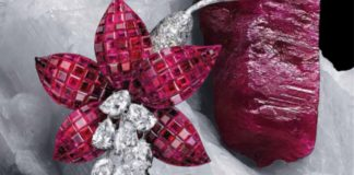 Clip Fuchsia, 1968 Platine, or jaune, Serti Mystérieux rubis, diamants Collection Van Cleef & Arpels